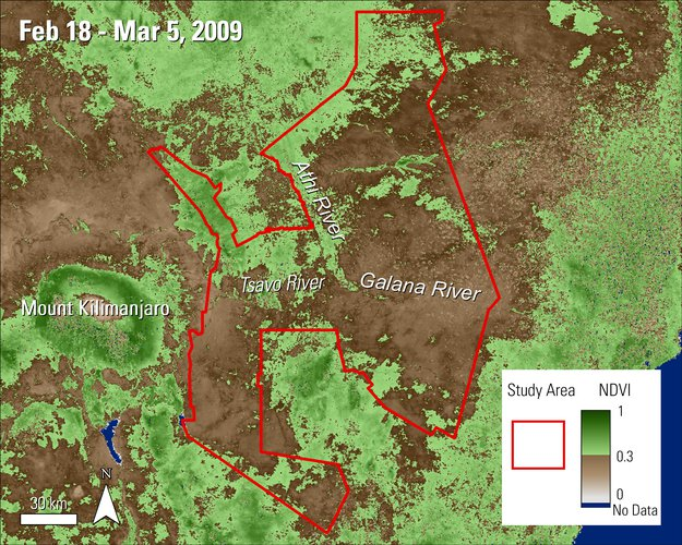 Terra MODIS NDVI data over the Tsavo Conservation Area in Kenya during February and March 2009.