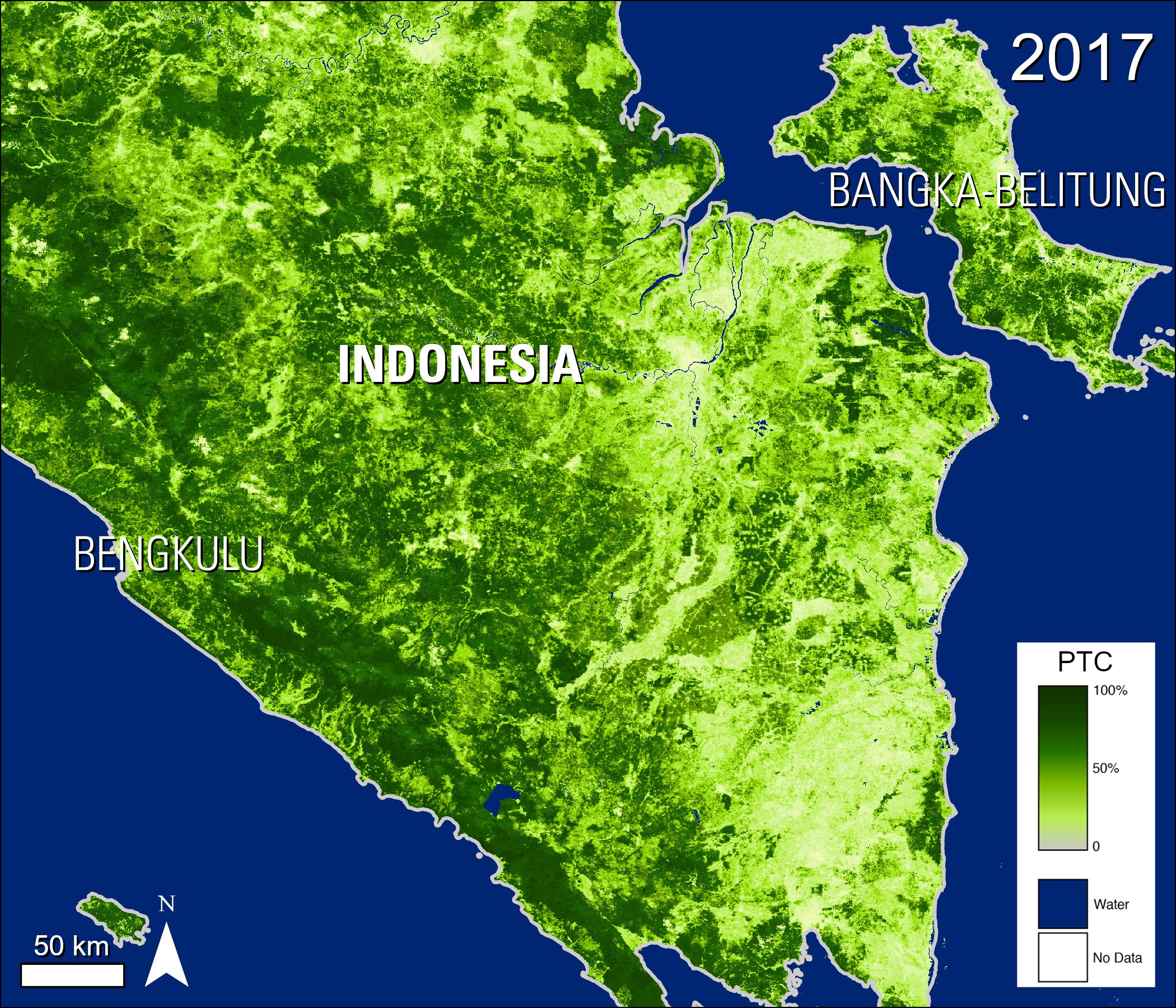 Percent Tree Cover map over part of Indonesia.