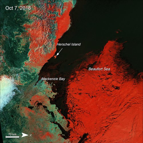 Terra MODIS Surface Reflectance data over the Beaufort Sea, Canada showing sea ice in red.