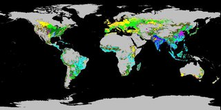 Global view of Crop Dominance