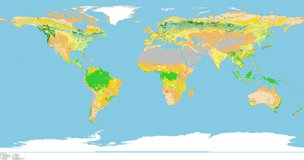 Global view of Majority Land Cover Type IGBP.