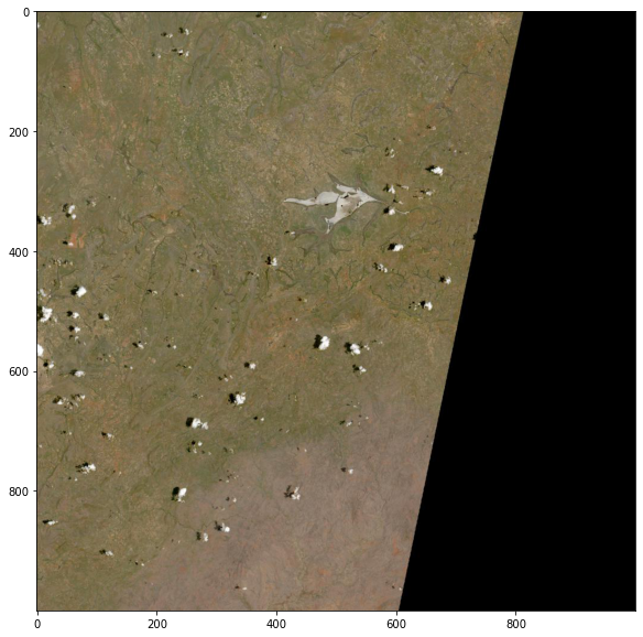 HLS browse image showing grasslands in shades of green and brown over an unknown location.
