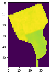 Basic plot of EVI over walnut orchard in northern California.